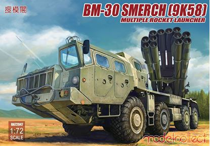 Picture of BM-30 Smerch(9K58)multiple rocket launcher